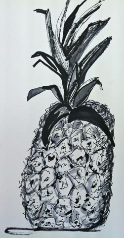 Pineapple, Nyla, ink drawing workshop, Oracle